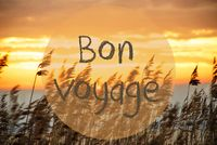 Beach Grass At Sunrise Or Sunset, Text Bon Voyage Means Good Trip