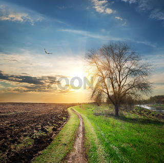 Plowed field and road