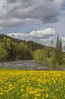 Frühligszeit in Oppland