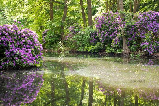 Tiergarten 020. Germany