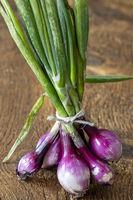 Bündel von lila Zwiebeln auf Holz