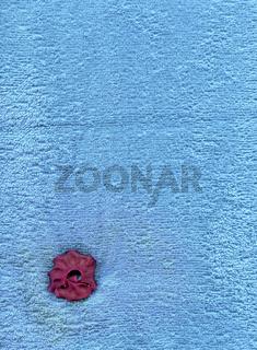 Blauer Frotteestoff mit roter Trockenblume