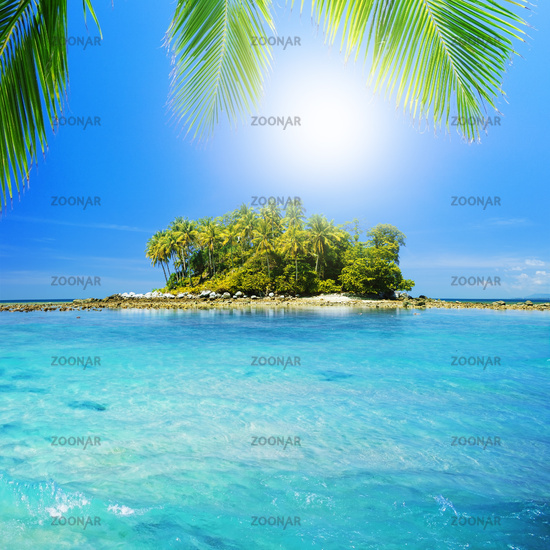 Tropical Heaven, square composition