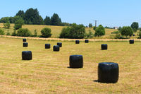French landscape with wrapped hay bales