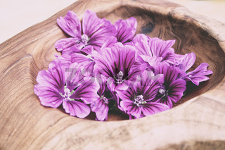 Mallow Blossoms in a Bowl, Spa treatment, Wellness