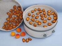 Apricots on dehydrator