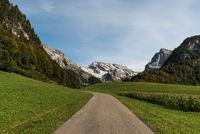 Road through pastureland with a view of the Saentis, Wildhaus-Alt St.Johann, Toggenburg, Switzerland