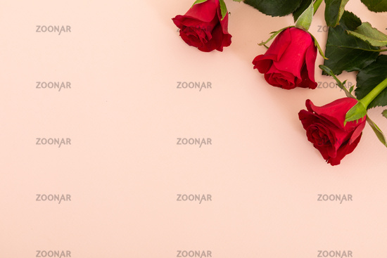 Three red roses in top right corner on pink background