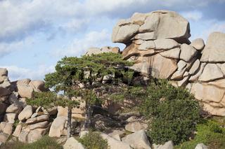 Cote de Granit Rose Rocks