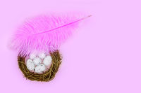 Pink feather shelters a nest with eggs on a pink background Easter concept.
