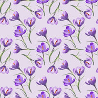 crocus flowers , seamless illustration.