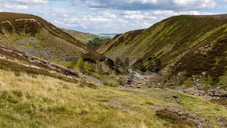 Yorkshire Dales near Surrender Bridge, North Yorkshire, UK