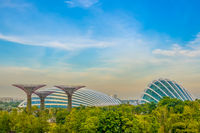 Superflowers and Flower Dome at Evening