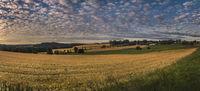 Oberfränkische Landschaft bei Eppenreuth.jpg