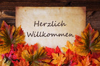 Grungy Old Paper, Colorful Leaves, Willkommen Means Welcome