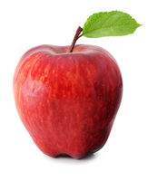 Fresh Apple isolated on white background, including clipping path without shade.