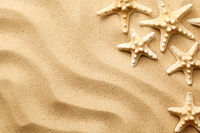 Starfishes On The Sand Background
