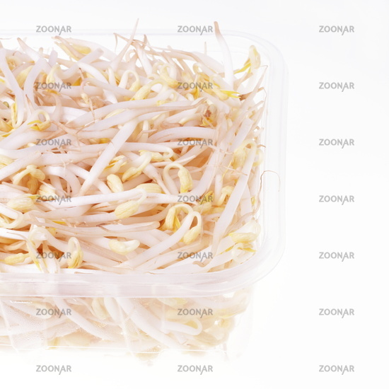 Fresh soy bean sprouts in plastic tableware isolated on white background, . Health, Superfoods, environmental protection concept