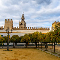 the historic Patio de Banderas in Seville with the cathedral in the background