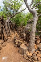 path in walled village tribes Konso, Ethiopia
