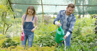 Young man and woman taking care of plants and watering with pot