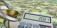 2021 Calculator Euro Notes Aesculapian Staff
