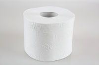 a roll of toilet paper