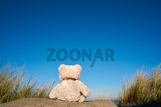 Trauriger Teddybär mit Fernweh