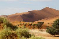 Desert landscape, Sossusvlei, Namibia