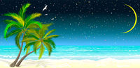 Tropical beach with palm trees at night