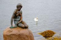 Monument of Little Mermaid in Copenhagen, Denmark