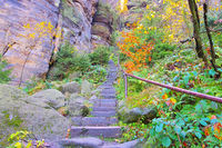 Aufstieg zum Pfaffenstein in der Saechsischen Schweiz im Herbst - Stairs to the Pfaffenstein in the Elbe sandstone mountains in autumn