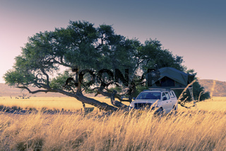 camping with a off road 4x4 truck with rooftop tent under a tree in the African Savannah in Namibia during sunset
