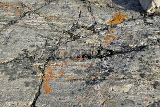 Felsen und Flechten, Sydkap, Scoresby Sund, Ost-Grönland