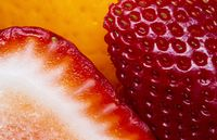 Macro Close Up Fruit