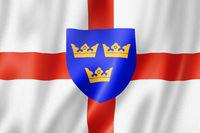East Anglia Region flag, UK