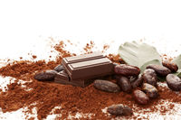 Cocoa powder, beans, chocolate and  leaves on white background.