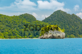 Coast of the Tropical Island and Rocky Islet