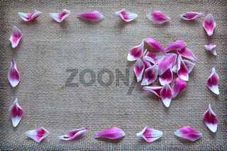 Valentine's day background with heart of roses petals