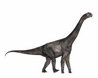 Brontomerus dinosaur - 3D render