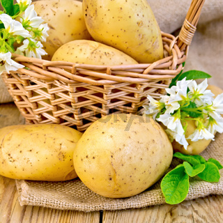 Potatoes yellow with flower and basket on board and sackcloth