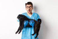 Vet clinic concept. Amazed male doctor veterinarian holding cute black pug dog, smiling and staring up impressed, standing over white background