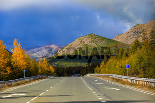The nature of the Magadan region. An asphalt road among bright trees, stretching into the distance to high hills