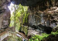 New Zealand cave