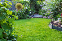 Landscape view of  beautiful garden with freshly mowed lawn and flowerbed. Soft focus on foreground