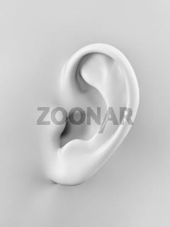 3d rendered illustration of a human ear