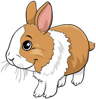 cartoon dwarf rabbit comic animal character