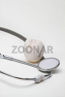 egg skin health