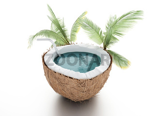 coconut paradise. summer concept on white background
