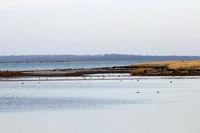 Landscape 008. Poel Island
